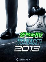Real Football Manager 2013 (8 кБ)
